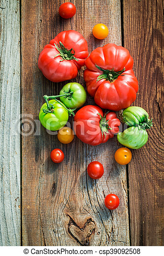 Ripe tomatoes in the countryside - csp39092508
