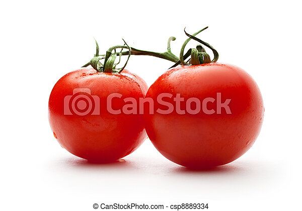 Ripe tomatoes on a branch - csp8889334