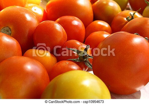 Ripe tomatoes - csp10954673