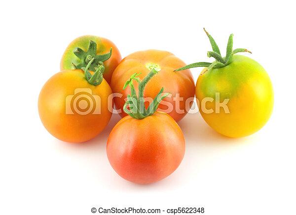 Ripe tomatoes - csp5622348