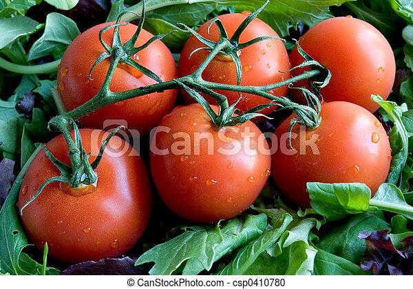 Ripe Tomatoes - csp0410780