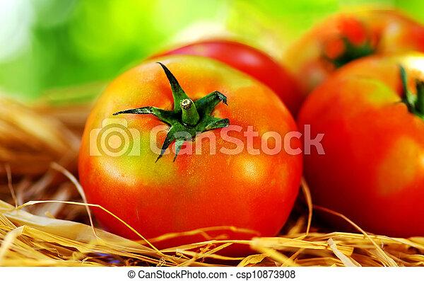 Ripe tomatoes - csp10873908