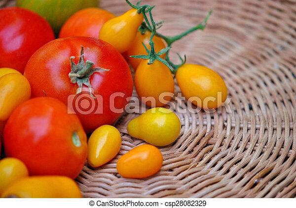 Ripe tomatos - csp28082329