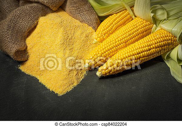 Ripe young sweet corn cob and cornmeal - csp84022204