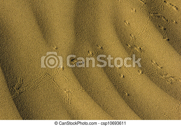 Ripples in the Sand - csp10693611