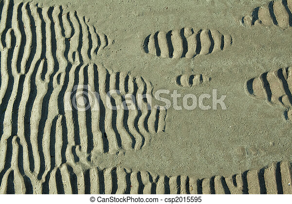 ripples in the sand - csp2015595
