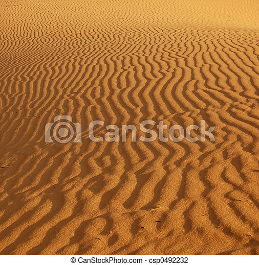 Ripples in the sand - csp0492232