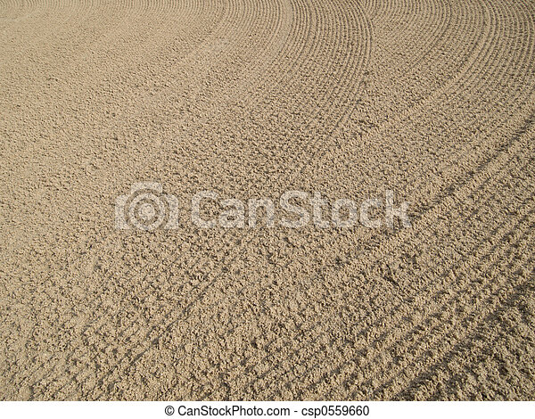 Ripples in the sand - csp0559660