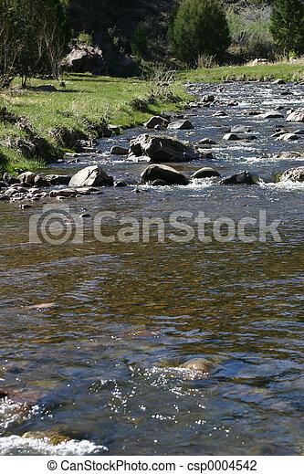 River 4493 - csp0004542