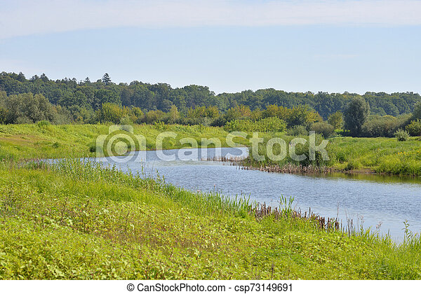 River at sunny day. - csp73149691