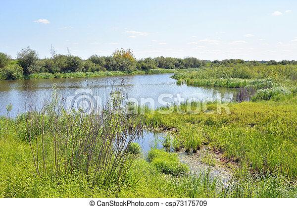 River at sunny day. - csp73175709