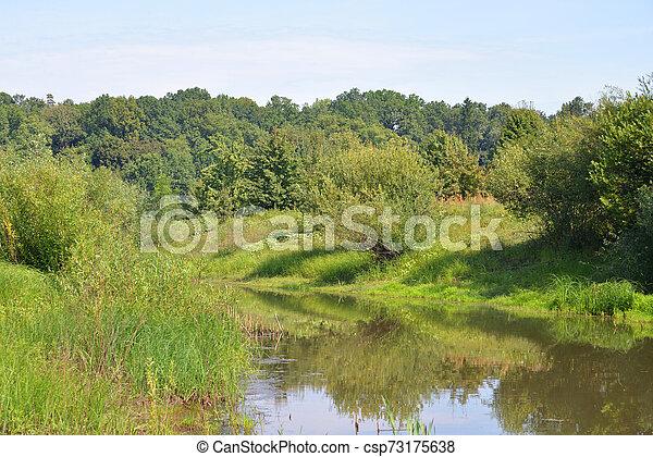 River at sunny day. - csp73175638