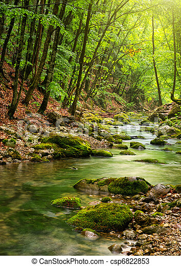 River deep in mountain forest - csp6822853