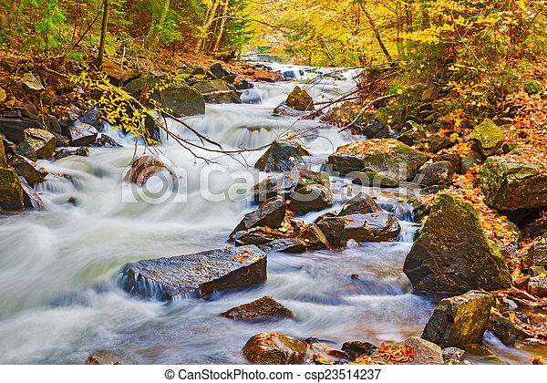 River in Algonquin Park in Ontario, Canada. - csp23514237