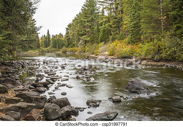 River in Algonquin Park - Ontario, Canada - csp31997791