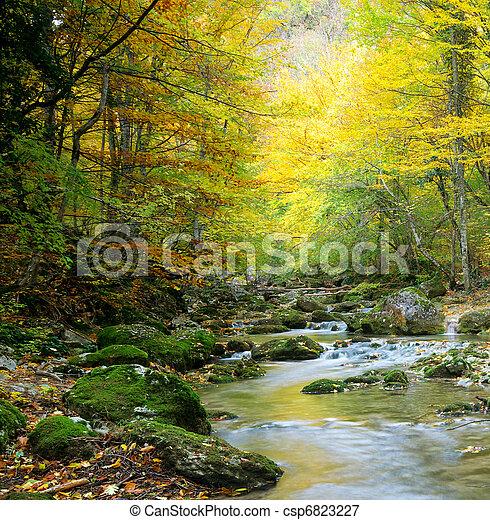 River in autumn forest - csp6823227