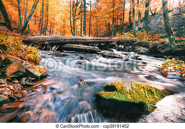 River in the autumn forest - csp39191452