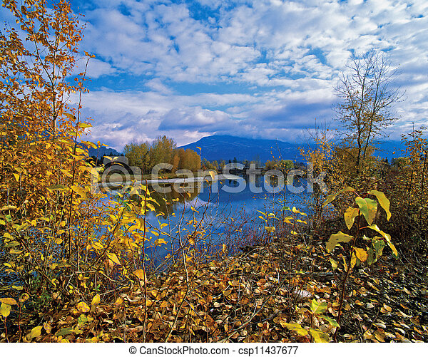 river in the colored fall scenery