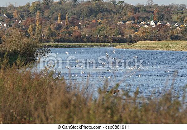 river landscape - csp0881911