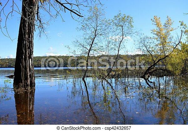 River Landscape - csp42432657