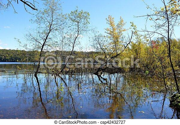 River Landscape - csp42432727