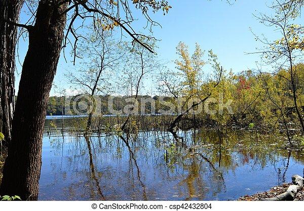 River Landscape - csp42432804