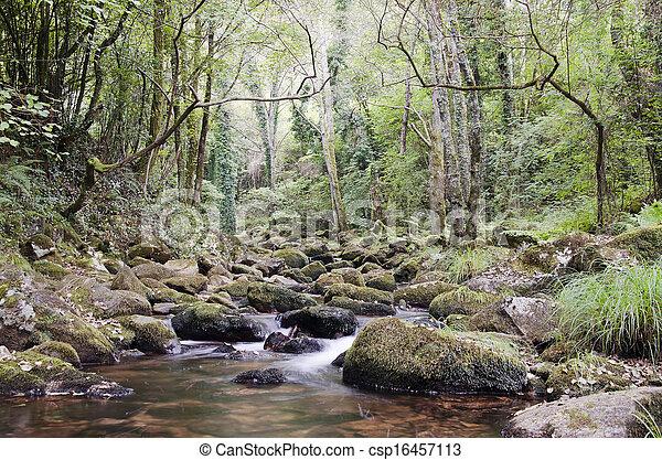 River - csp16457113