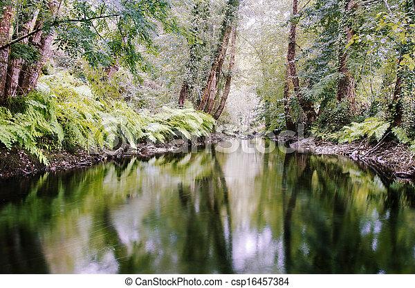 River - csp16457384