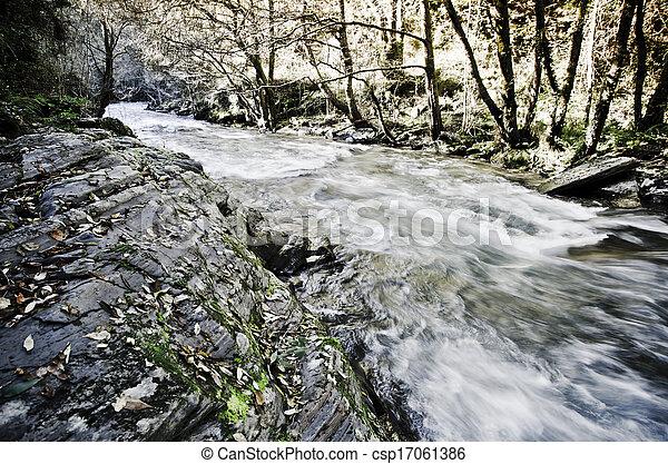 river - csp17061386