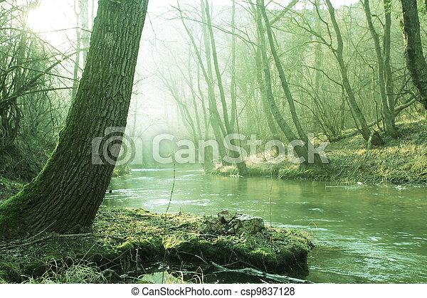 River - csp9837128