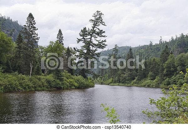 River shore - csp13540740
