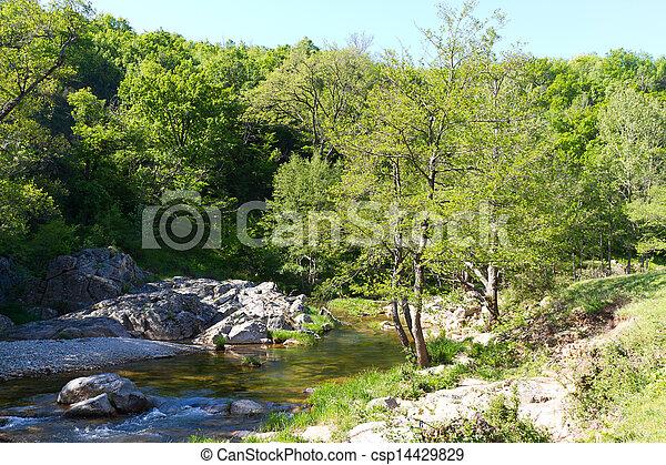 River - csp14429829