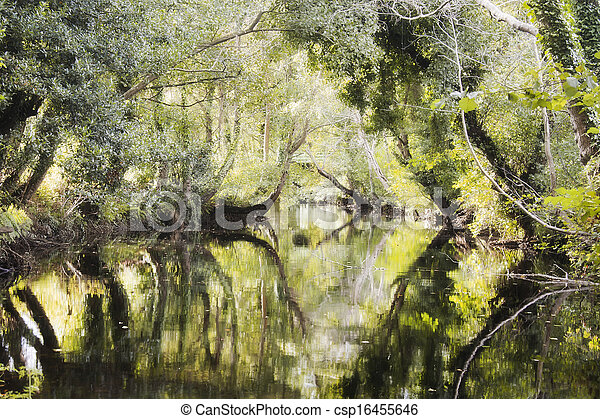 River - csp16455646