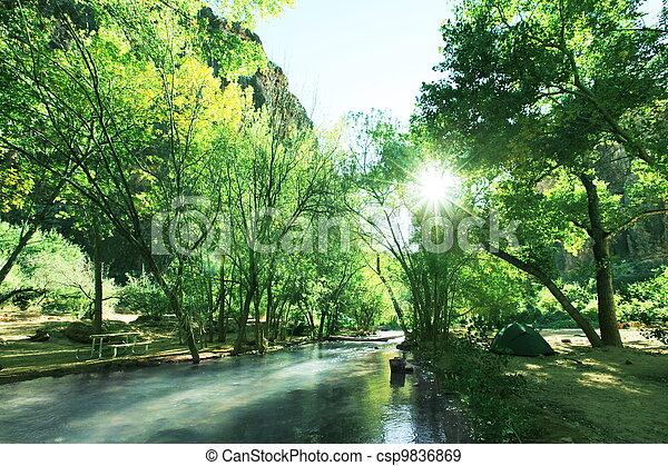 River - csp9836869