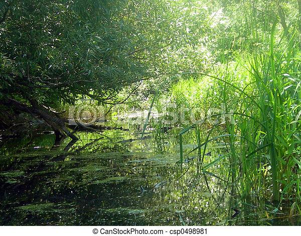 riverside spring - csp0498981