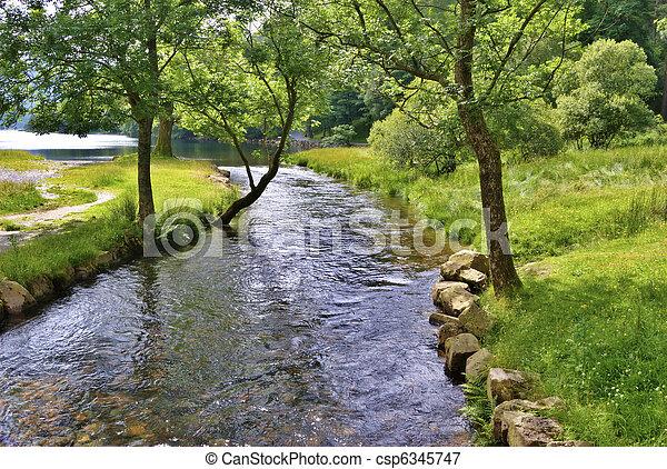 rivière, scène, paisible - csp6345747