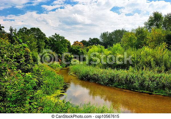 rivier, zonnige dag - csp10567615