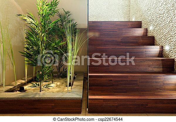 rośliny, hala, piękno - csp22674544
