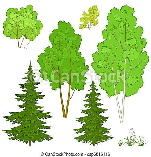 rośliny, komplet - csp6816116