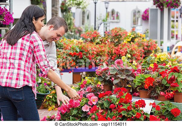 rośliny, para, środek, wybierając, ogród - csp11154011