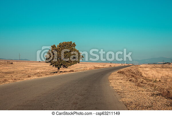 Road and the tree in desert - csp63211149