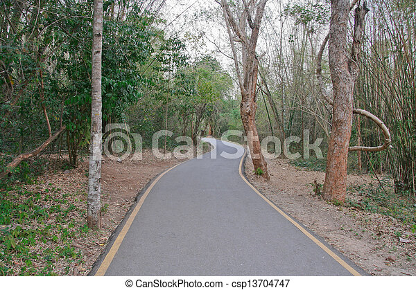 Road in a forest - csp13704747