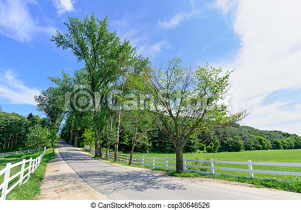 Road in a horse ranch - csp30646526
