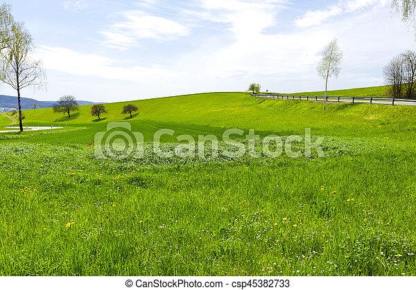 Road in Swiss Alps - csp45382733
