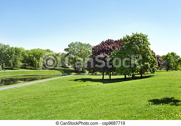 road in the park by summer - csp9687719