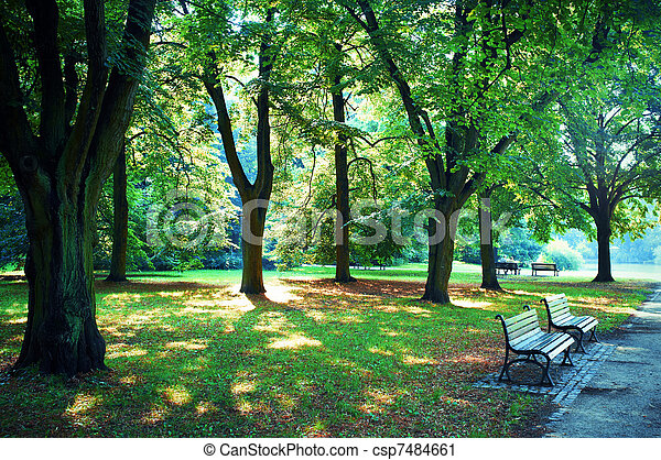 Road in the park - csp7484661
