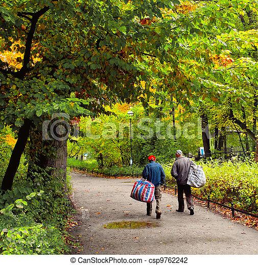 Road in the park - csp9762242