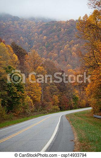 Road through autumn trees - csp14933794
