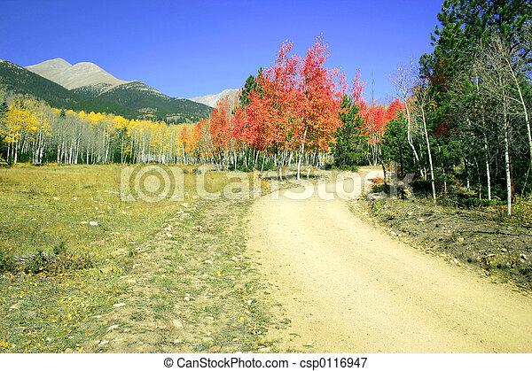Road to Shavano - csp0116947