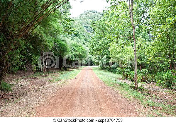 Road to the mountain - csp10704753